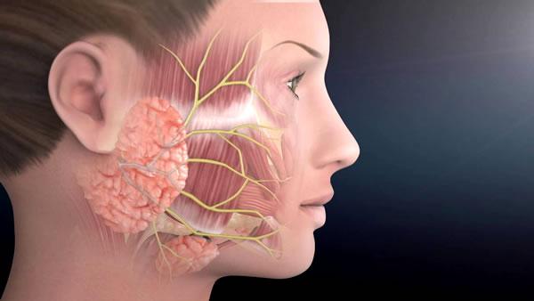 tratamientos para paralisis facial en guayaquil